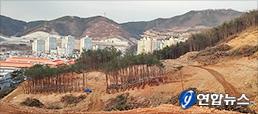 서울 재건축 이슈